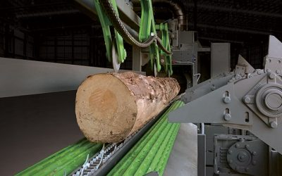 Infeed with log turning rollers